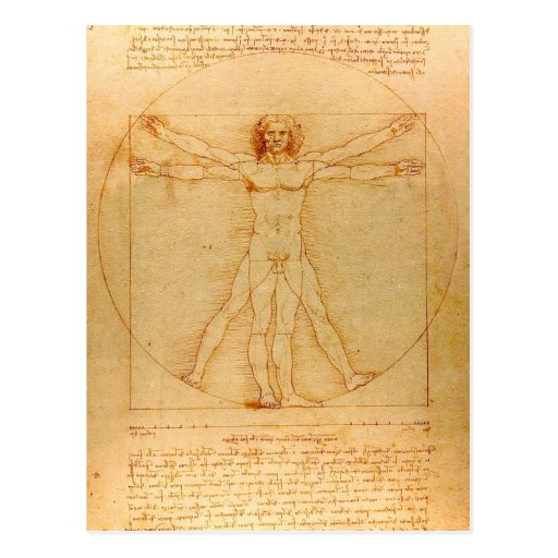 Human Anatomy, Vitruvian Man by Leonardo da Vinci Post Card