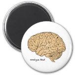 Human Brain: Analyse This!