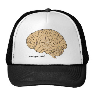 Human Brain: Analyze This! Cap