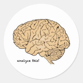 Human Brain: Analyze This! Round Sticker