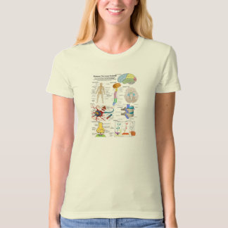 Human Brain and Central Nervous System Diagram T-Shirt