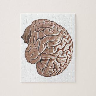 human brain jigsaw puzzle