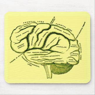 Human Brain Mousemats