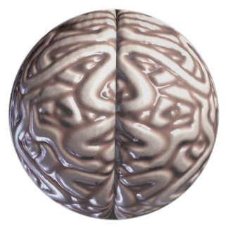 Human Brain Plate