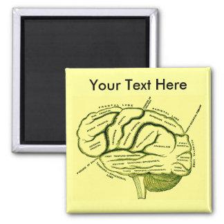 Human Brain Square Magnet