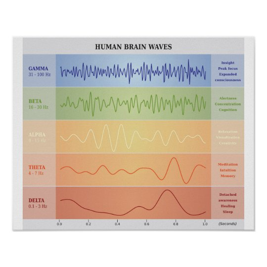 Human Brain Waves Diagram - Rainbow Colours Poster