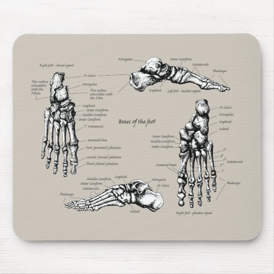 Human foot mouse mat