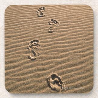 Human footprints on sandy beach coaster