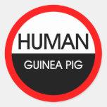 Human Guinea Pig Classic Round Sticker