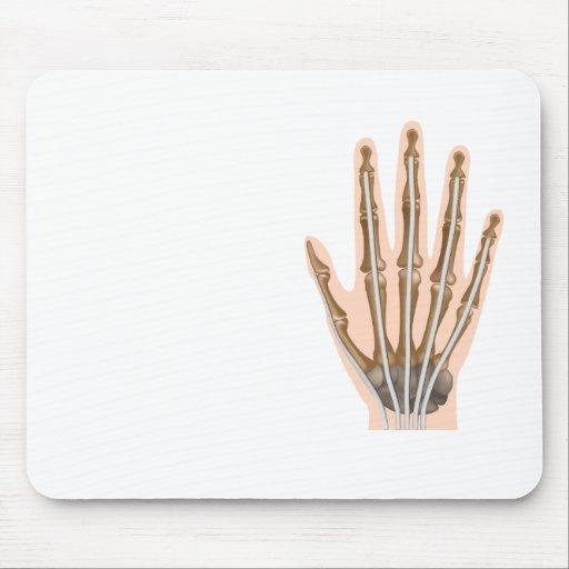 Human hand anatomy Mousepad