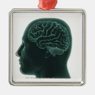 Human head in profile showing the brain christmas ornament