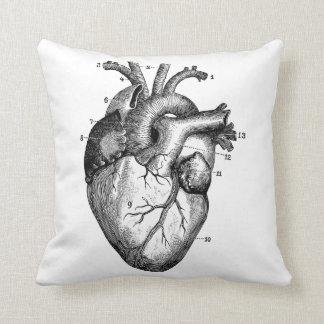 Human heart - anatomy cushion