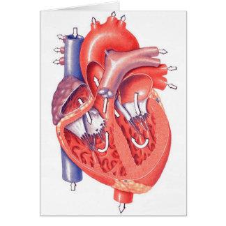 Human Heart Greeting Card