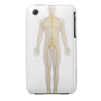 Human Nervous System 2 iPhone 3 Cover