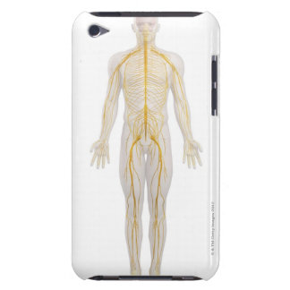 Human Nervous System 2 Barely There iPod Cases