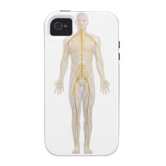 Human Nervous System 2 iPhone 4 Covers