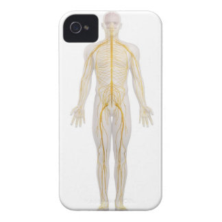 Human Nervous System 2 Case-Mate iPhone 4 Case