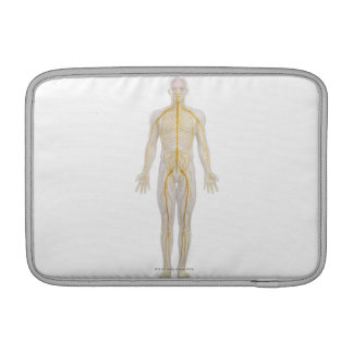 Human Nervous System 2 Sleeve For MacBook Air