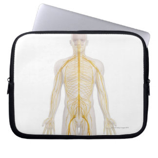 Human Nervous System 2 Laptop Computer Sleeves
