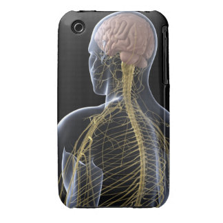 Human Nervous System iPhone 3 Covers