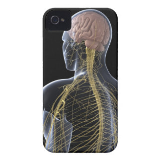 Human Nervous System iPhone 4 Case-Mate Cases