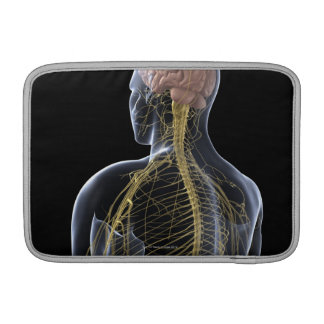 Human Nervous System MacBook Sleeve