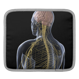 Human Nervous System Sleeve For iPads