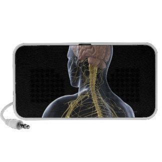 Human Nervous System Mini Speakers
