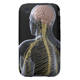 Human Nervous System Tough iPhone 3 Cases