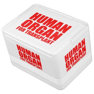 HUMAN ORGAN FOR TRANSPLANT IGLOO COOLER