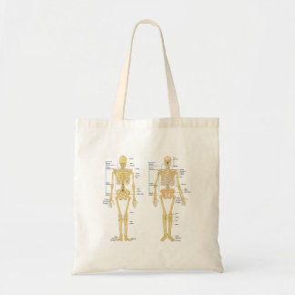 Human Skeleton labeled anatomy chart Tote Bag
