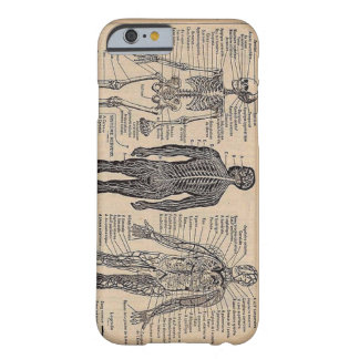 Human Skeleton Medical Diagram iPhone 6 case