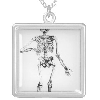 Human Skeleton Silver Plated Necklace