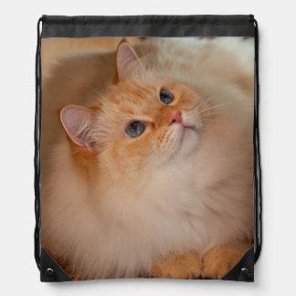 Humane Society cat Drawstring Bags
