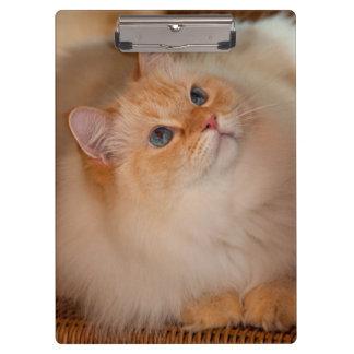 Humane Society cat Clipboard