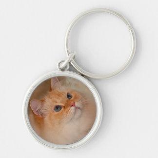 Humane Society cat Key Ring