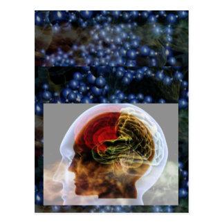 HUMANOID : Brain Brainy Science Biology Mind Postcard