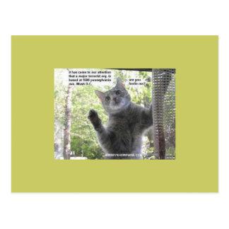 humanpatriots postcard