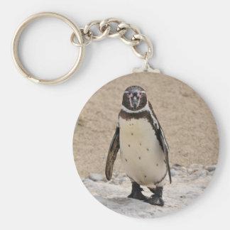 Humboldt Penguin Keychain