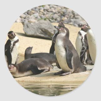 Humboldt Penguins Classic Round Sticker