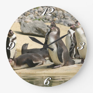 Humboldt Penguins, Clock