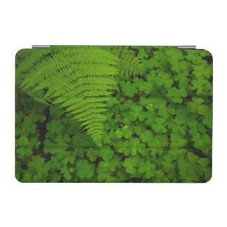 Humboldt Redwoods State Park iPad Mini Cover
