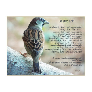 Humility Sparrow PhotoArt by Rybird Gallery Wrap Canvas