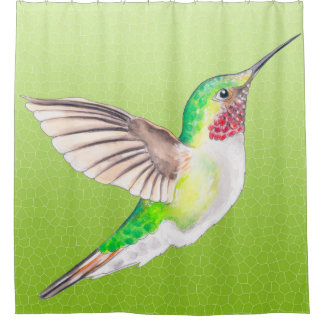 Hummer Lime Shower Curtain