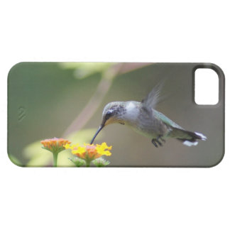 Humming Along Barely There iPhone 5 Case