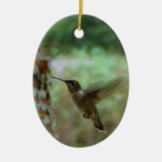 Humming bird in motion christmas ornament
