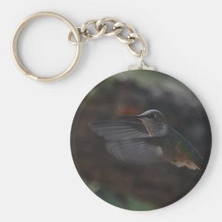 Humming bird key chains