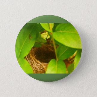 Humming Bird Nest Nestled in Honeysuckles Button
