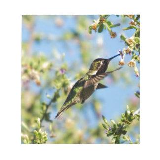 Humming Bird Notepad