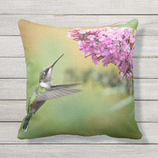 Hummingbird 5053 outdoor cushion